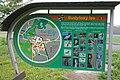 Budyňský les, komplex lužních lesů z Budyně nad Ohří do Žabovřesk podél Malé Ohře, Budyně nad Ohří, okres Litoměřice.JPG