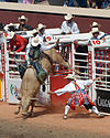 A cowboy hangs onto a bucking bull while a rodeo clown watches.