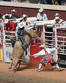 A man attempts to hang onto a rope tied around a bucking bull, while a rodeo clown and several cowboys look on.