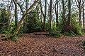 Bushy Park, Dublin -123664 (31090483061).jpg