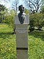 Bust of Endre Probocskai by Géza Széri-Varga, 2013 in Buda Arboreta. - Budapest District XI.JPG