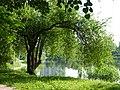 Bydgoski Balaton - panoramio (18).jpg