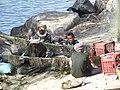 C'est la vie sur le Nil - panoramio - youssef alam (3).jpg