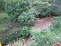 Córrego São Francisco, também chamado de Córrego da Divisa na Estrada Vicinal José Riul em Jardinópolis - panoramio.jpg