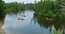 Canoes AuSableRiverMI.jpg