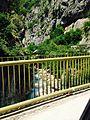 Canyon Rugove Image.jpg