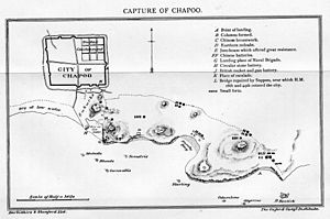 Battle of Chapu - Map of the battle