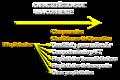 Caracteristicas de una corriente Propiedades.png