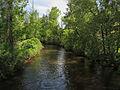 Cedar River Gladwin Michigan.jpg