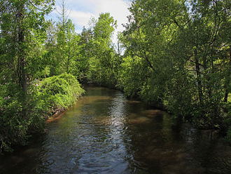 Gladwin County, Michigan - Image: Cedar River Gladwin Michigan
