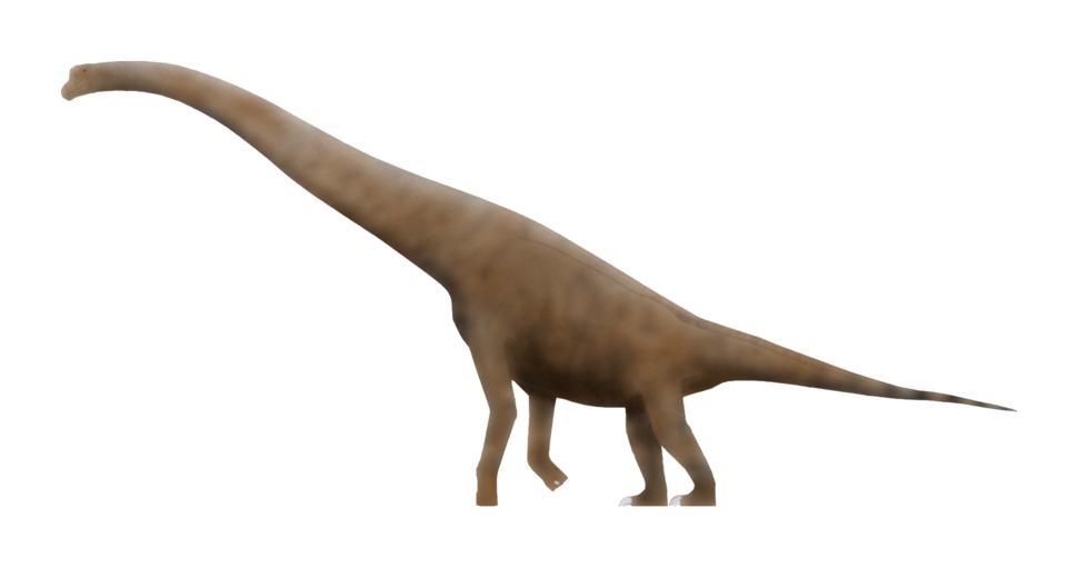 Cedarosaurus SW