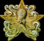 Cephalopod barnstar.png