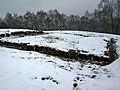 Cetatea dacica Blidaru WP 20151129 13 52 15 Pro highres.jpg