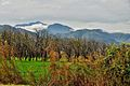 Chakdara, Lower Dir-KPK, Pakistan.jpg