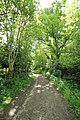 Chemin de Jean Racine à Saint-Lambert le 18 mai 2015 - 1.jpg