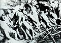 Children killed by Japanese troops in the Nanjing Massacre.jpg
