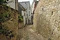 Chinon (Indre-et-Loire) (24262693209).jpg