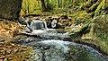 Chiprey, cascadelles sur le ruisseau des Champs du Poix.jpg