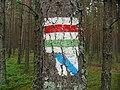 Chojnice, Poland - panoramio (18).jpg