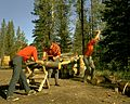 Chopping wood, Blue Lake, Alberta (29376701656).jpg
