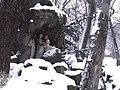 Chotkovy sady - panoramio (2).jpg