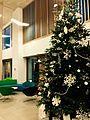 Christmas Tree, Atrium Cafe, Newman University, Birmingham.jpg