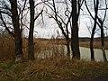 Chyhyryns'kyi district, Cherkas'ka oblast, Ukraine - panoramio (35).jpg