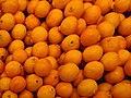 Citrus tangelo 'minneola'.jpg