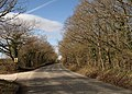 Clay Lane - geograph.org.uk - 1173161.jpg