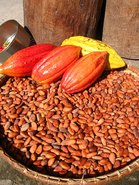 Bestand:Cocoa Pods and Seeds.jpg