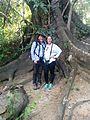 Community Baboon Sanctuary Fig Tree - Flickr - GregTheBusker (1).jpg