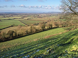 Nibley Knoll Geological Site of Special Scientific Interest in Gloucestershire