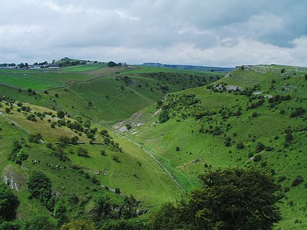 Cressbrook Dale, one of several steep-sided valleys that cut into the limestone plateau Cressbrook Dale - geograph.org.uk - 11079.jpg