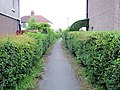 Crewe - ginnel from Underwood Lane to Pear Tree Avenue - geograph.org.uk - 809370.jpg