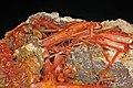 Crocoïte, goethite, limonite 300-4-FS2014.jpg