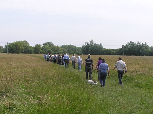 Crossing the Meadows at Ditchford Lakes Nature Reserve - June 2009 - panoramio
