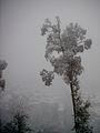 Curico, la nevada del 2007, cerro Condell (10029570033).jpg