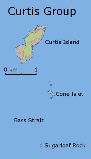 Curtis Island (Tasmania) - Map of the Curtis Group