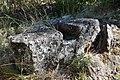 Dacian Fortress of Capalna 076.jpg