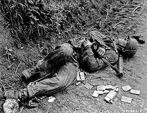 12th SS Panzer Division Hitlerjugend - Dead Waffen-SS soldier, Normandy 19 June 1944