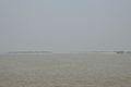 Debhata - River Ichamati - Bangladesh-India 2015-01-13 4520.JPG