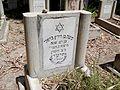 Degania Alef Cemetery Moshe Berrski.JPG