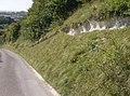 Descending Upton Cow Down - geograph.org.uk - 539007.jpg