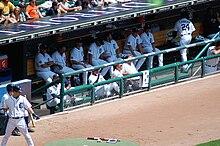 Detroit Tigers Ballpark Tours