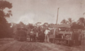 Diesel locomotives of Stann Creek Railway in banana plantation.png