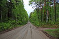 Dirt road in Bystroistokskiy District 03.JPG