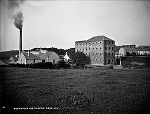 Irish whiskey - Bushmills Distillery, County Antrim, claims to be the world's oldest licensed distillery.