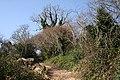 Dittisham, track to Bozomzeal - geograph.org.uk - 1223489.jpg