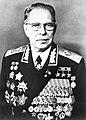 Dmitry Ustinov (grayscale).jpg