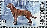 Dog-Canis-lupus-familiaris Albania stamp.jpg